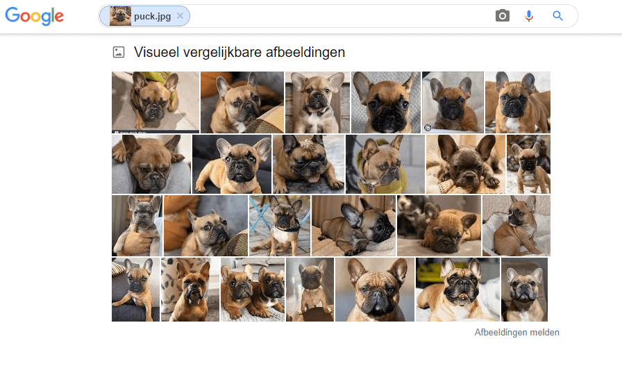 wat is visual search
